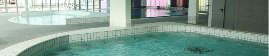 Enfin une superbe piscine foix ari ge gites ari ge for Piscine foix