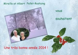 bonne année 2014 à tous nos amis du gîte de Ruffié !