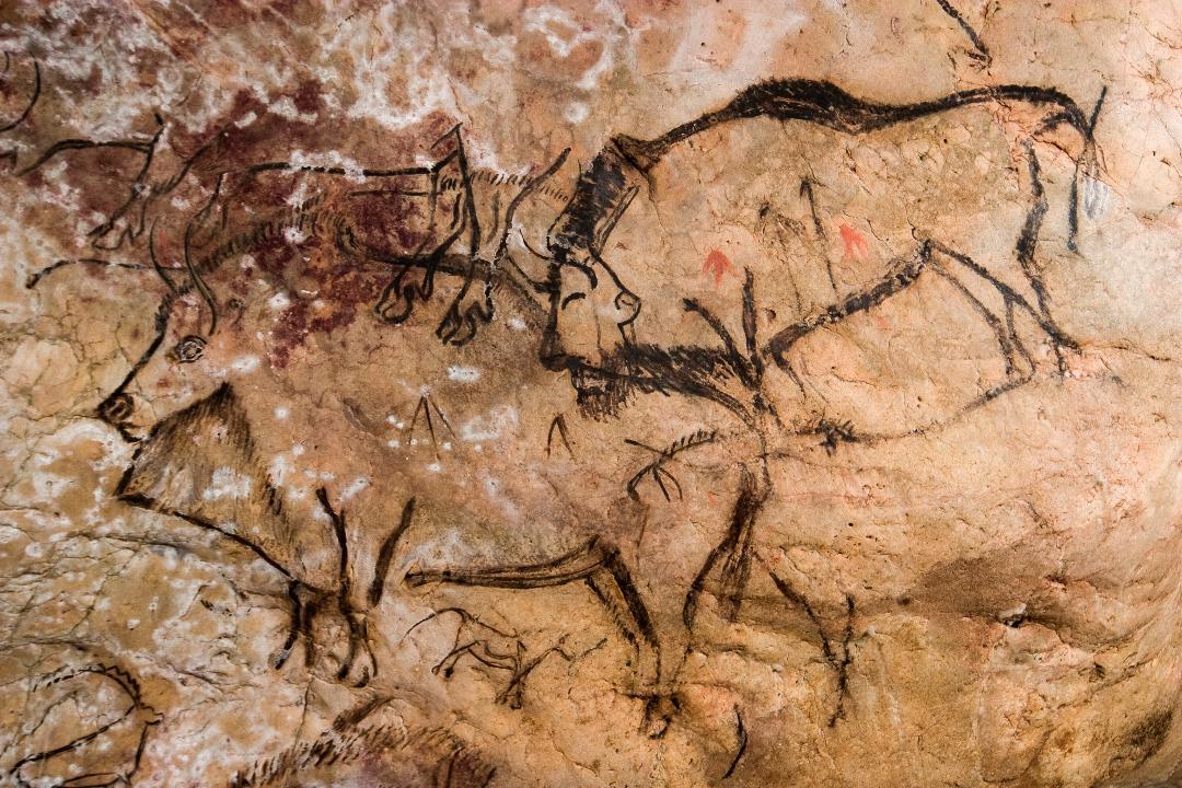 Les bisons de la Grotte